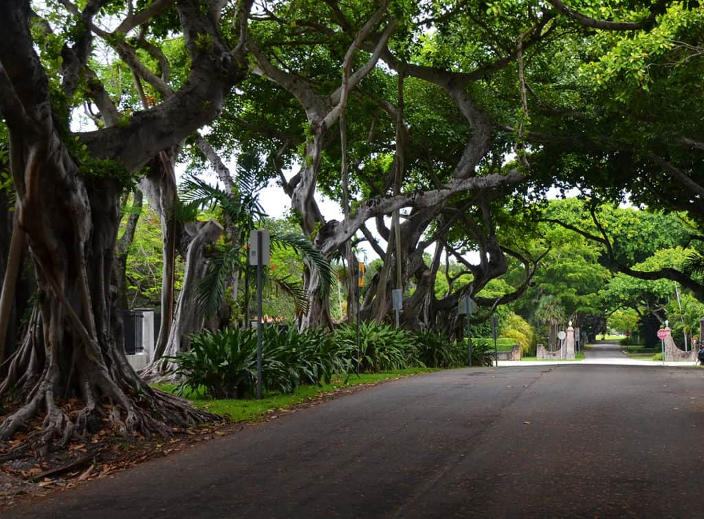 The Coral Gables Neighborhood Experience Guide